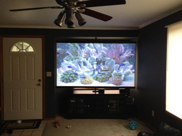 What Is The Best Home Theater Projector Screen