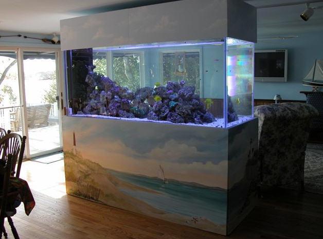 aquarium layout design » Design and Ideas
